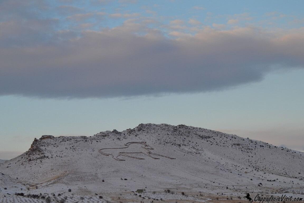 Каппадокийский конь зимой