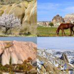 Весна, лето, осень и зима в Каппадокии