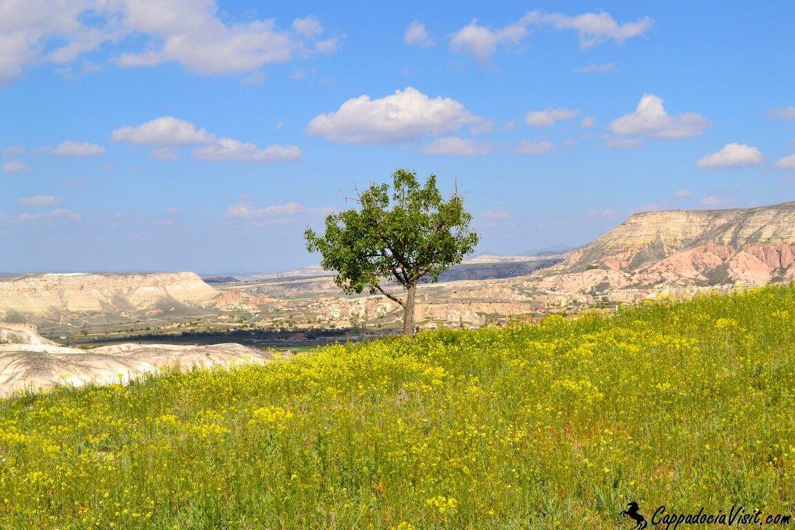 Каппадокия - весенний пейзаж