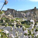 Весна в музее под открытом небом Гёреме