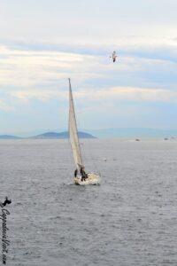 Парусная лодка в Босфорском проливе